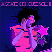 A State of House, Vol. 11 by Various Artists