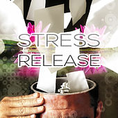 Stress Release with Bach, Beethoven, Mozart – Anti Stress Music, Peace of Mind, Calmness Melodies, Soothing Music, Destress Sounds by Stress Relief Music Consort