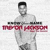 Know Your Name (feat. Sage The Gemini) by Trevor Jackson
