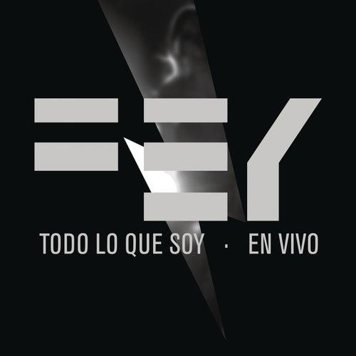 Todo Lo Que Soy (En Vivo) by Fey