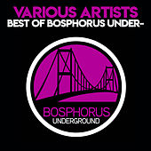 Best Of Bosphorus Underground 2014 by Various Artists