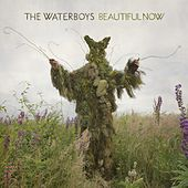 Beautiful Now von The Waterboys