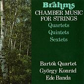 Brahms: Chamber Music for Strings by Various Artists