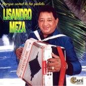 Porque Usted Lo Ha Perdido by Lisandro Meza