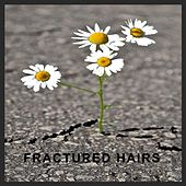 Fractured Hairs by James Arthur