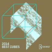 2014 Best Cubes by Various Artists
