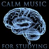 Peaceful Studying Music by Various Artists