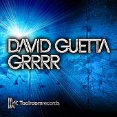 GRRRR (Club Mix) by David Guetta