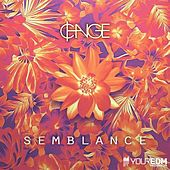 Semblance by Change