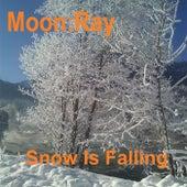 Snow Is Falling by Raggio Di Luna (Moon Ray)