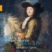 Les musiques de Louis XIV Vol. 2: Du ballet à l'opéra by Various Artists