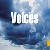 Voices von Various Artists