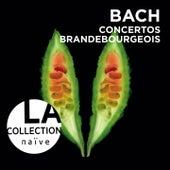 Bach: Brandenburg Concertos by Rinaldo Alessandrini