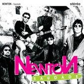 Saudade by Newton