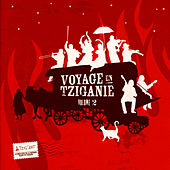 Voyages en Tziganie II (A Journey to Tzigania II) by Various Artists