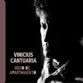 Indio de Apartamento von Vinicius Cantuaria