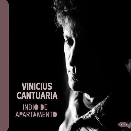 Indio de Apartamento by Vinicius Cantuaria
