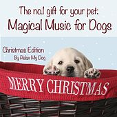 Magical Music for Dogs : Christmas Edition by Relaxmydog