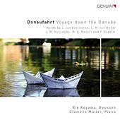Donaufahrt by Rie Koyama