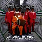 El Picaflor by Chon Arauza Y La Furia Colombiana