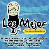 Los Mejor Del Ano Sonidero by Various Artists