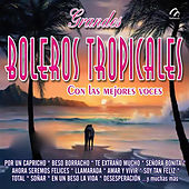 Grandes Boleros Tropicales by Various Artists