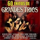 60 Éxitos de Grandes Tríos by Various Artists
