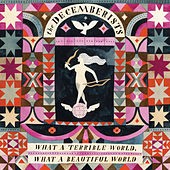 The Wrong Year von The Decemberists