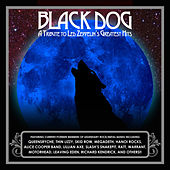 Black Dog: A Tribute To Led Zeppelin's Greatest Hits by Various Artists