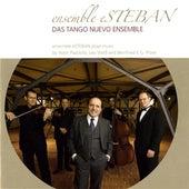Ensemble Esteban by Various Artists