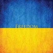 Freedom by David Cain
