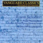 Schubert: Piano Masterpieces by Various Artists
