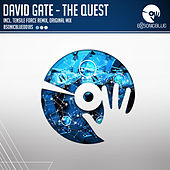 The Quest by David Gate