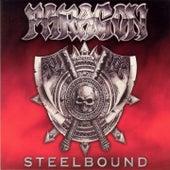 Steelbound by Paragon