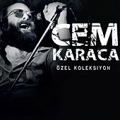 Özel Koleksiyon by Various Artists