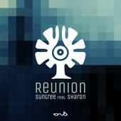 Reunion (feat. Sharon) by Suntree