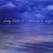 Storm's Sigh by Bing Futch