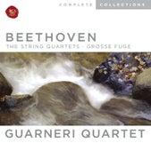 Beethoven, String Quartets; Grosse Fuge by Guarneri Quartet