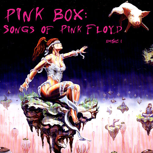 Pink Box: Songs Of Pink Floyd by Various Artists