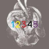 Meda Fury 12345 by Various Artists