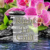 Right To Chill Vol.2 by Feng Shui