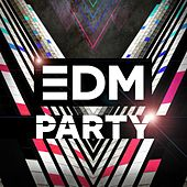 EDM Party by Various Artists