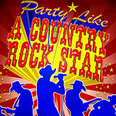 Party Like a Country Rock Star von Various Artists