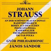 An der Schonen Blauen Donau - Radetzkymarsch by Gyor Philharmonic Orchestra
