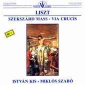 Liszt: Szekszárd Mass - Via Crucis by Various Artists