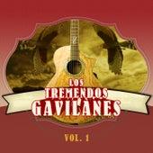 Los Tremendos Gavilanes, Vol. 1 by Los Tremendos Gavilanes