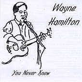 You Never Knew by Wayne Hamilton