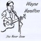 You Never Knew by Wayne Hamilton