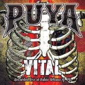 Vital by Puya