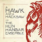 A Hawk And A Hacksaw And The Hun Hangár Ensemble by A Hawk and a Hacksaw